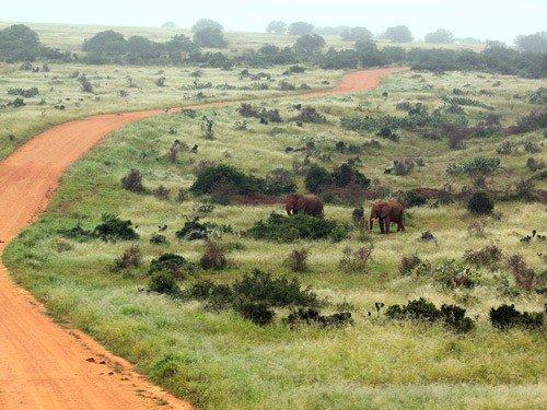 Viaggio fotografico in Sudafrica