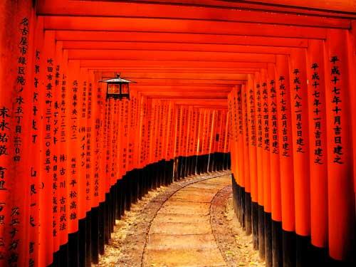 viaggio fotografico Giappone novembre 2018