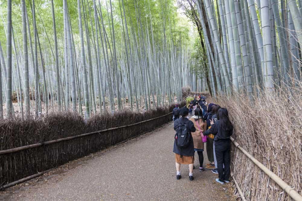 viaggio fotografico Giappone