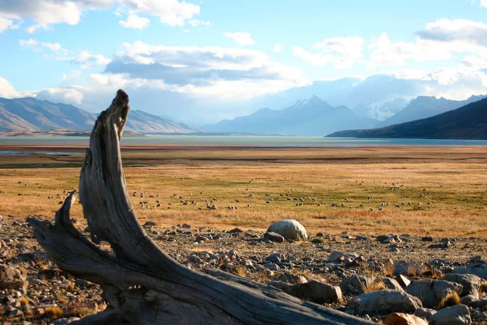 viaggio fotografico in Argentina 4