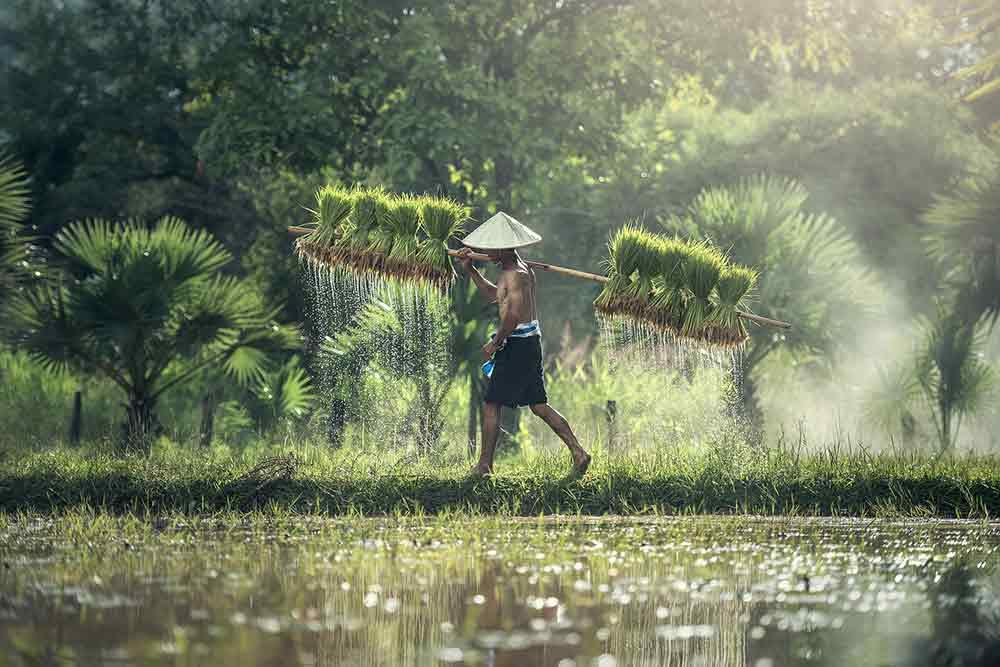 viaggio-fotografico-in-Cambogia-5